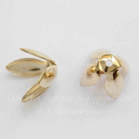 Шапочка для бусины в виде цветка 18х13 мм (цвет - золото), 10 штук