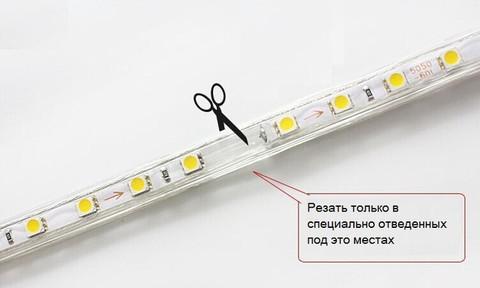LED_5050_duralayt_купить