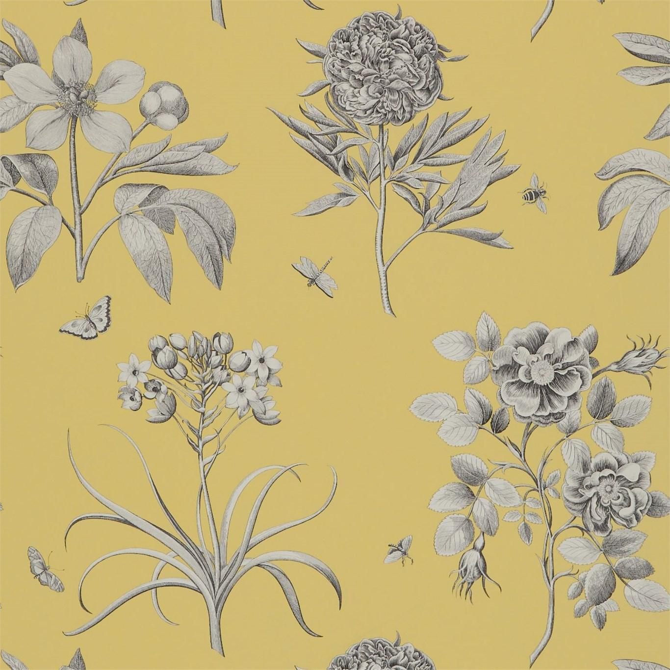 Обои Sanderson Parchment Flowers DPFWER104, интернет магазин Волео