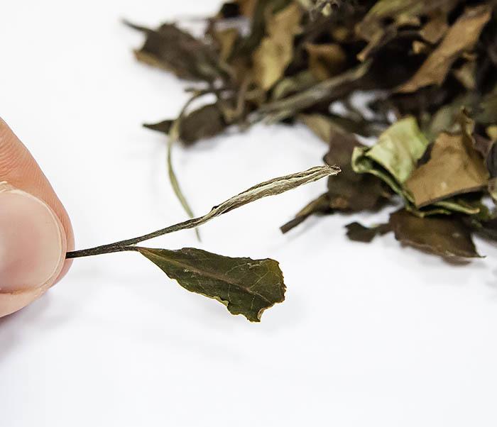 TEA-CH133 Китайский белый чай «Брови долголетия» (Шоу Мэй, 50 гр) фото 03