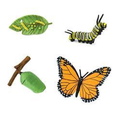 Жизненный цикл бабочки Монарх, Safari Ltd, состав набора