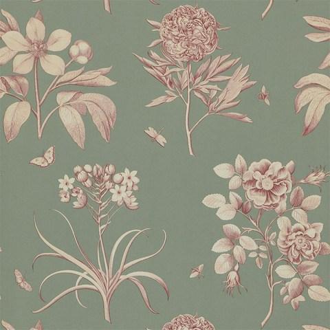 Обои Sanderson Parchment Flowers DPFWER105, интернет магазин Волео
