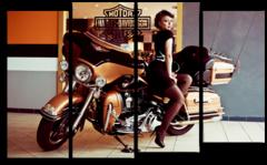 "Модульная картина ""Harley Davidson pin up"""