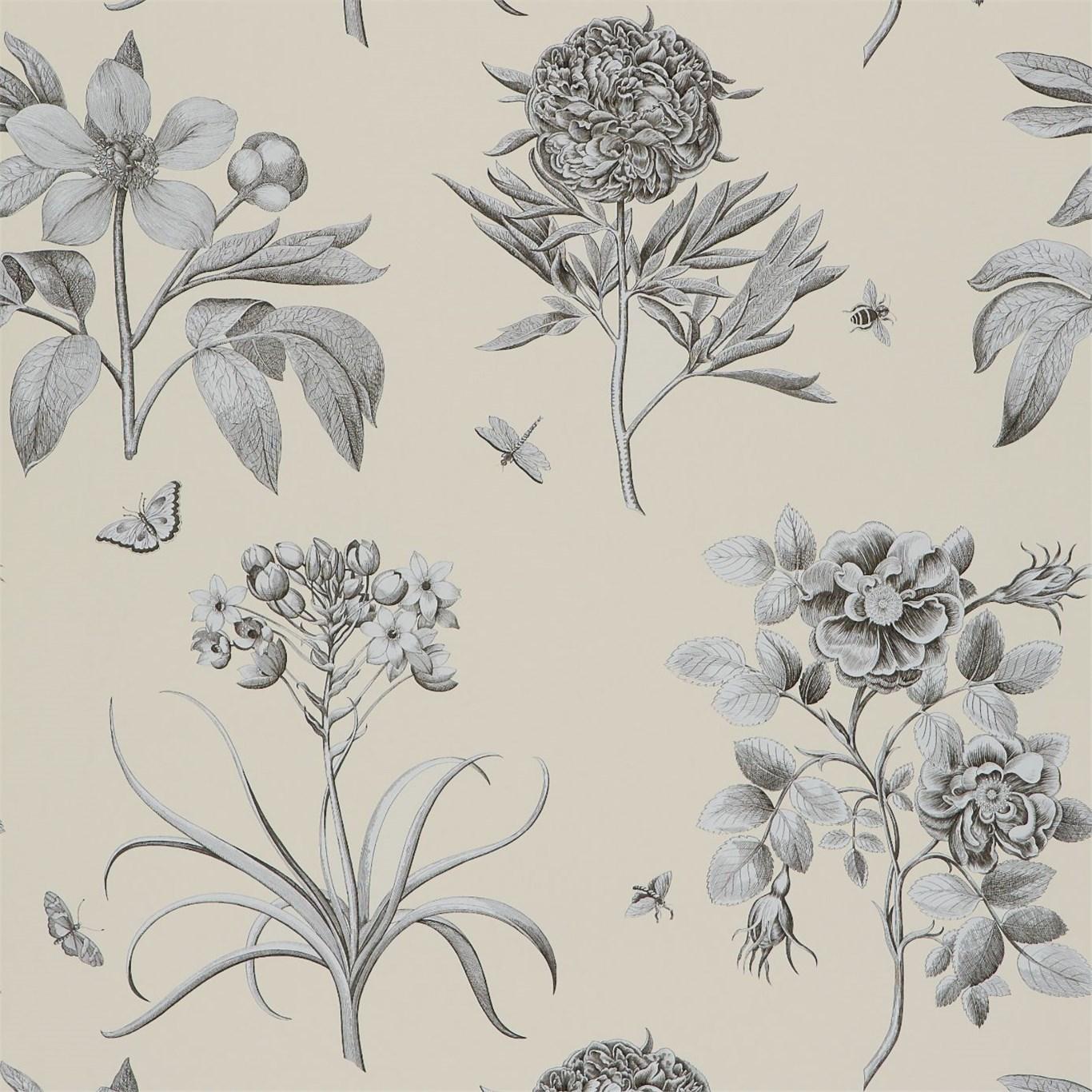 Обои Sanderson Parchment Flowers DPFWER106, интернет магазин Волео