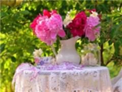 Картина раскраска по номерам 40x50 Розовые летние цветы в ...