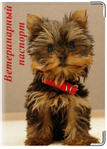 """Обложка для ветеринарного паспорта """"Йорк"""" (2)"""