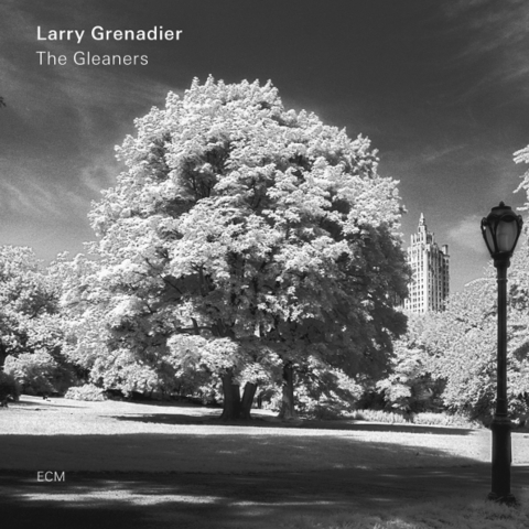 Larry Grenadier / The Gleaners (LP)