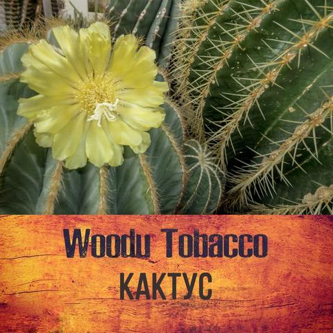 Табак Woodu 250 г Кактус