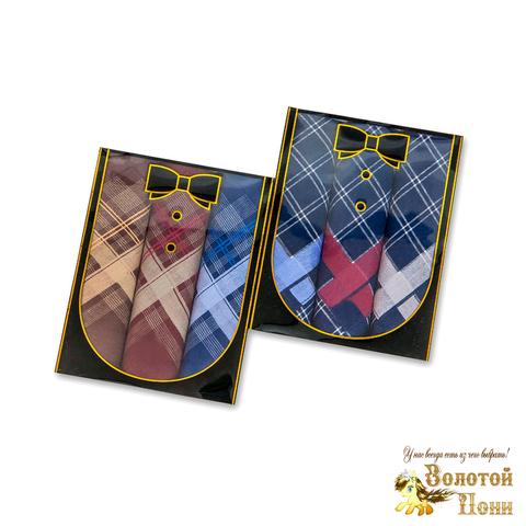 Набор мужских носовых платков 3 ШТ (42х42) 191203-PL1012