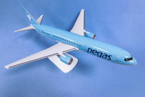 Модель самолета Boeing 767-300 (М1:100, Пегас голубой)