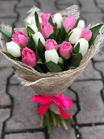 Букет из 19 белых и розовых тюльпанов