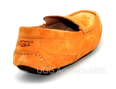 UGG Men's Ascot Chestnut