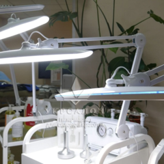 Настольная лампа 9501-CСT LED с теплым/холодным светом
