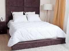 Элитное одеяло стеганое лёгкое 150х200 German Grass 95C