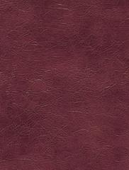 Искусственная кожа Oregon Natural (Орегон Натурал) 134