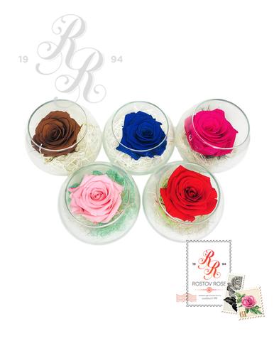 Роза розовая в бокале