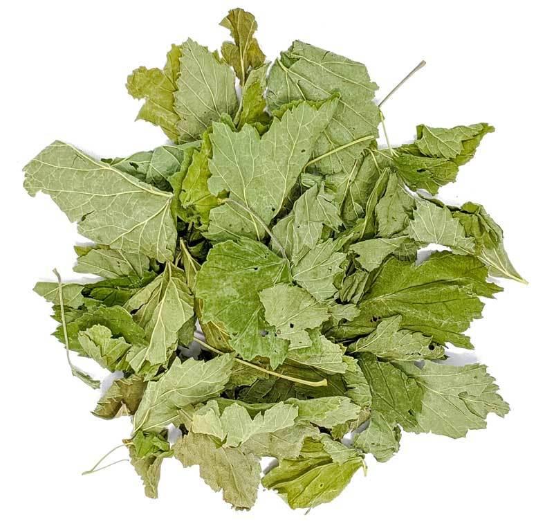 Травы и добавки Лист черной смородины цельный, сушеный, 100 гр Chernaya_smorodina.jpg