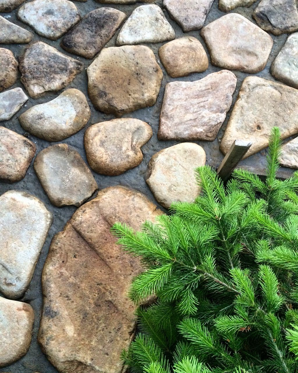Мощение дорожки Шаговая дорожка камень речной Жёлто-серый