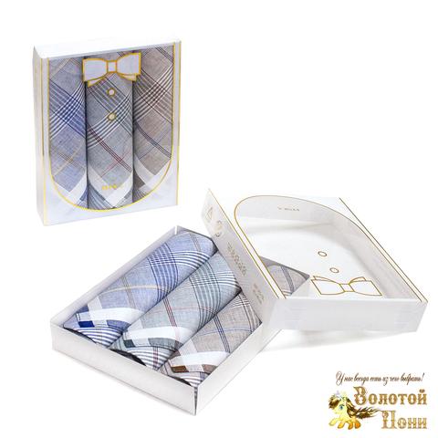 Набор мужских носовых платков 3 ШТ (42х42) 191203-PL1027