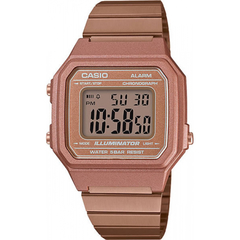 Мужские часы Casio Standart B650WC-5ADF