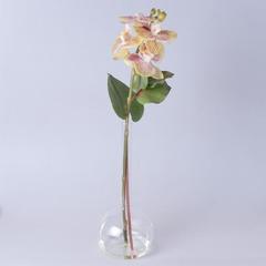 Орхидея в геле 90689-25