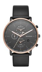 Мужские часы Skagen SKW6300