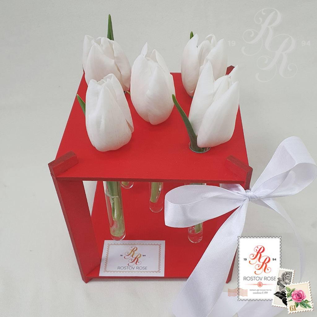 5 белых тюльпанов в пробирке