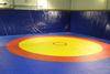 Ковер борцовский трехцветный 12х12м, наполнитель матов ППЭ+НПЭ 140кг/м3, толщина 4см