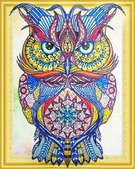 Драгоценная сова- алмазная картина с фигурными стразами, FKU007
