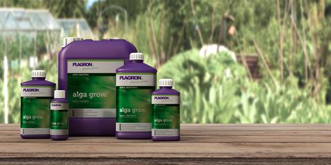 Plagron Alga Grow 1 L