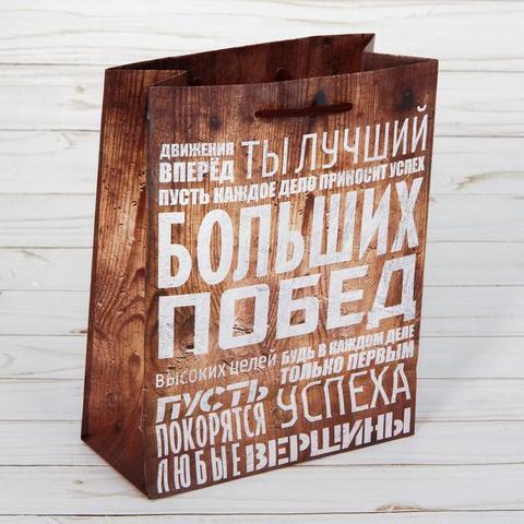 Пакет «Больших побед», 23×27×8 см