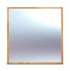 Модуль с зеркалом, 220Х220, медовый
