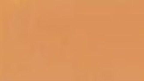 036 Краска Game Color Телесный Бронза (Bronze Fleshtone) укрывистый, 17мл