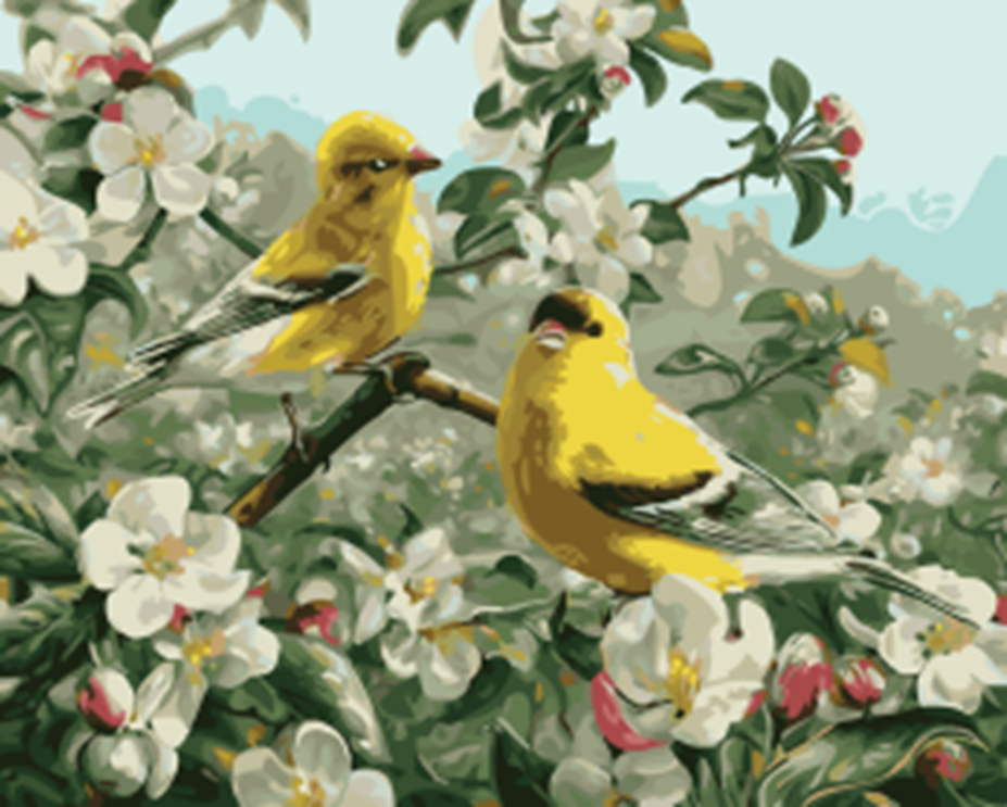 Картина раскраска по номерам 40x50 Желтые птицы на ...
