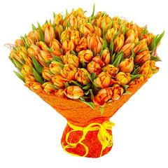 101 рыжий тюльпан
