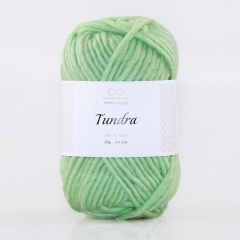 Пряжа Infinity Tundra 8913 мята