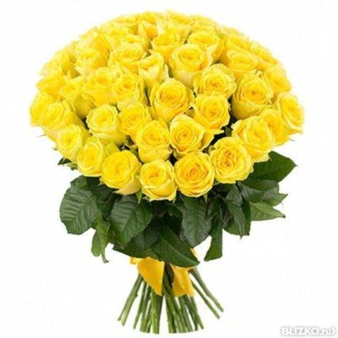 Букет из 51 желтой розы (80 см)