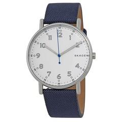 Мужские часы Skagen SKW6356