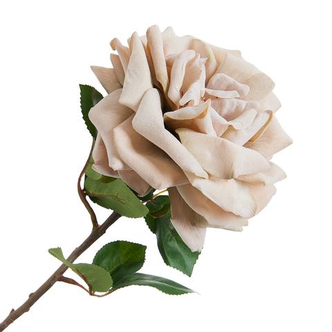 Роза бежевая 48 см