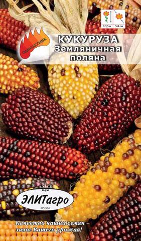 Семена Кукуруза Земляничная поляна, декоротивная