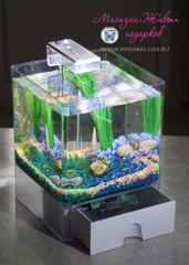 Мини аквариум куб 3 л с подсветкой №0023