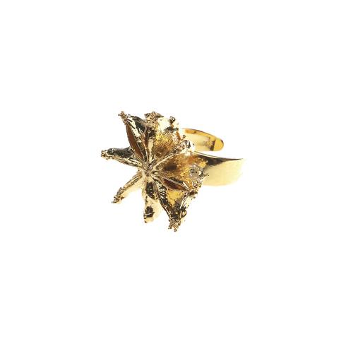 Кольцо Ester Bijoux LF20R-G BR