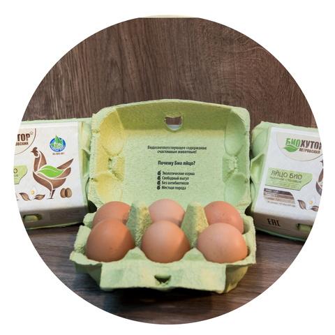 Яйцо куриное БИО (10шт)