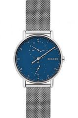 Мужские часы Skagen SKW6389
