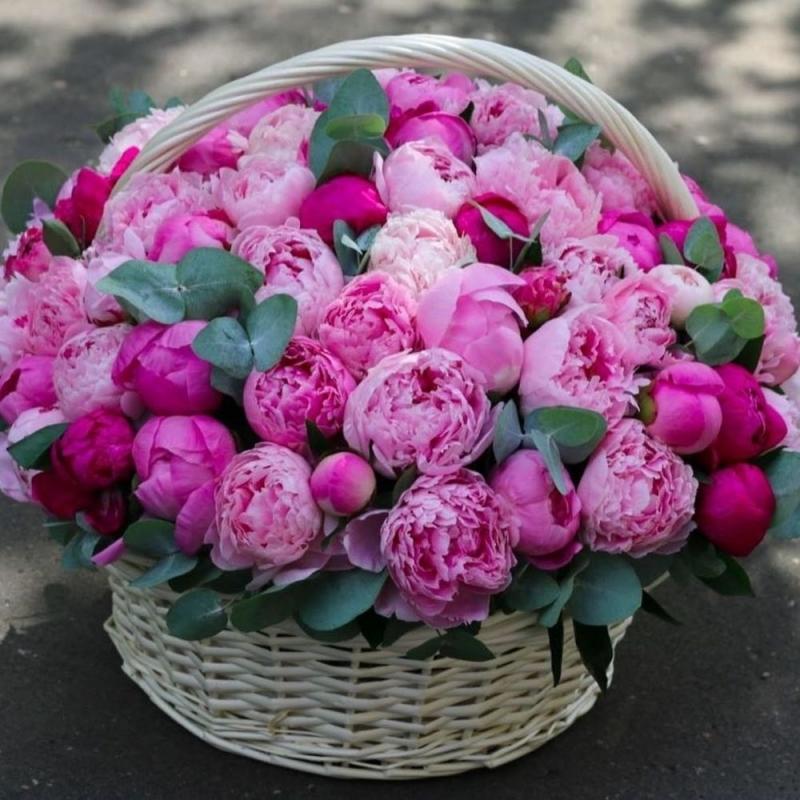 Оптом, купить цветы пионы в спб дешево с доставкой