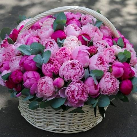 Корзина с пионами розовыми и малиновыми
