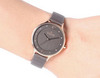 Купить Наручные часы Skagen SKW2267 по доступной цене