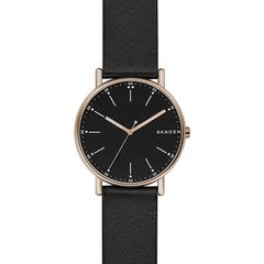Мужские часы Skagen SKW6401