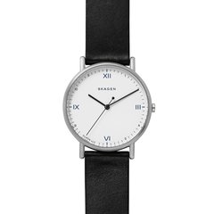 Мужские часы Skagen SKW6412