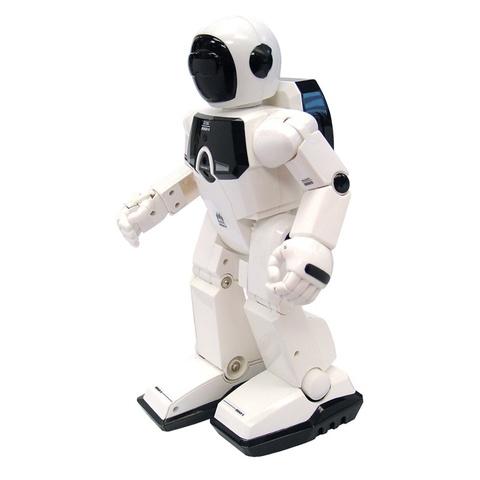 Робот Programme-a-bot
